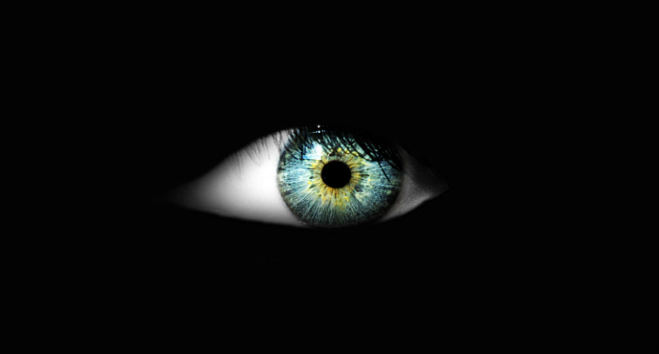 How To See In The Dark - Science World